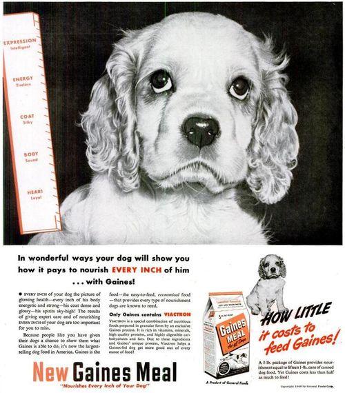 1948 Life Gaines